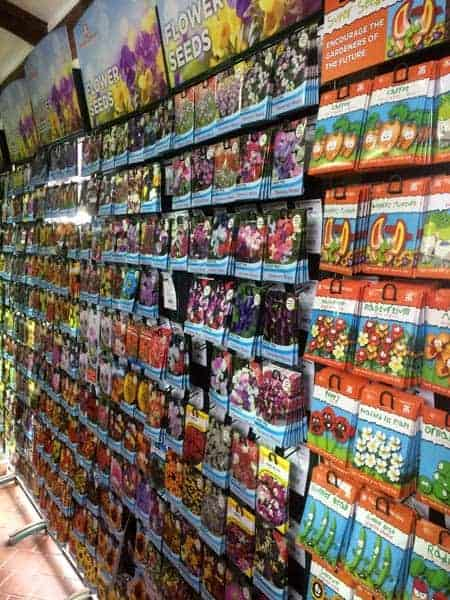 Large selection of seeds available at Bumbles Plant Centre