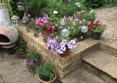 Patio pots and bedding planted up, early June 2019