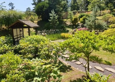 Kingston Lacy National Trust property Acer Garden