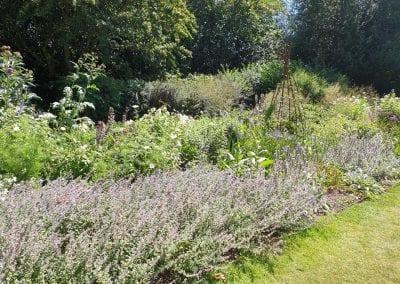 Kingston National Trust property grounds