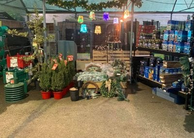 Christmas lights, trees and wreaths at Bumbles Plant Centre