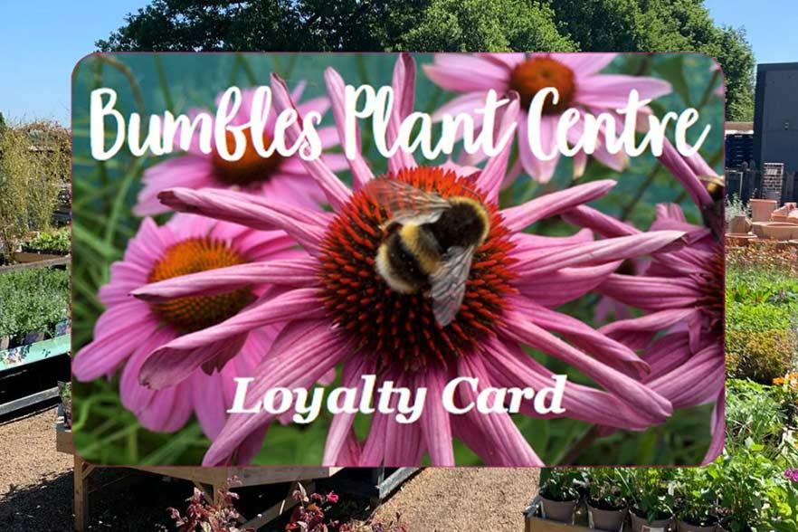 Bumbles Loyalty Card